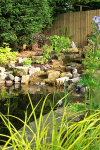 home_water_features